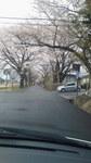 image/2012-04-21T07:25:19-1.jpg