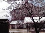 image/2012-04-27T10:45:02-2.jpg