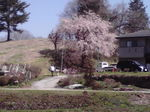 image/2012-04-29T09:58:46-3.jpg